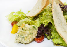 Vegetable salad and cheese. Salad vegetables and goat cheese on a white background Stock Photography