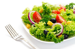 Vegetable Salad with Cheese Royalty Free Stock Photo