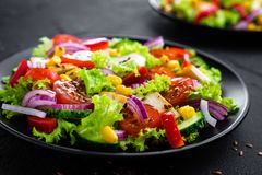Vegetable salad with chicken meat. Salad with chicken breast and raw vegetables. On plate stock photo