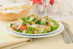 Vegetable salad with chicken and yogurt Stock Images