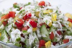 Vegetable salad. Royalty Free Stock Photo