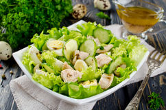 Vegetable salad with cod liver Royalty Free Stock Image