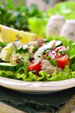 Vegetable salad with cod liver. Royalty Free Stock Photos