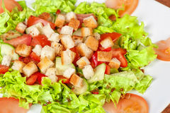 Vegetable salad with crackers Stock Photography
