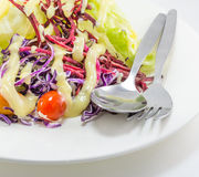 Vegetable salad with cream on dish with fork and spoon Stock Photos