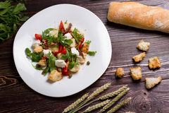 Vegetable salad with croutons and mozzarella. Stock Photos