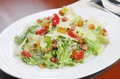Vegetable salad Stock Photos