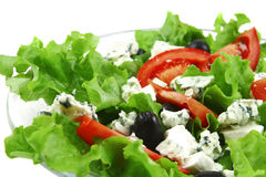 Vegetable salad and danish blue cheese Stock Photography
