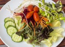 Vegetable salad on dish. Vegetable salad on white dish Royalty Free Stock Photography