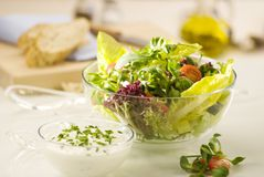 Vegetable salad and dressing Royalty Free Stock Photography