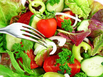 Vegetable salad and fork Stock Photography