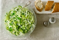 Vegetable salad of fresh cabbage, cucumber and onion with parsley and dill. Rustic style. royalty free stock image