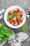 Vegetable salad with fresh tomato, basil and onion Royalty Free Stock Photo
