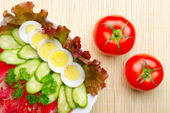 Vegetable salad and fresh tomatoes Royalty Free Stock Photo