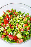Vegetable salad with fresh tomatoes cucumbers and green onions Royalty Free Stock Image