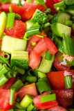 Vegetable salad with fresh tomatoes cucumbers and green onions Royalty Free Stock Photos