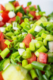 Vegetable salad with fresh tomatoes cucumbers and green onions Stock Photos