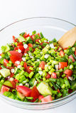 Vegetable salad with fresh tomatoes cucumbers and green onions Royalty Free Stock Images
