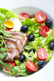 Vegetable salad with fried duck breast Royalty Free Stock Images
