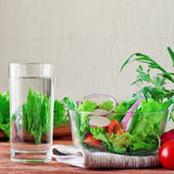 Vegetable salad with a glass of pure water Royalty Free Stock Photo
