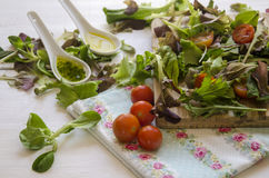 Vegetable salad greens Stock Photo