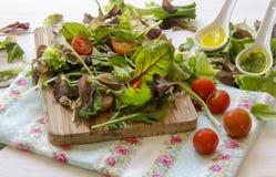 Vegetable salad greens Stock Photos