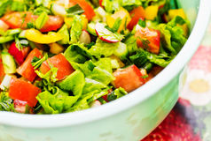 Vegetable Salad. Healthy salad from vegetables. Finely sliced ​​vegetables and served in a bowl Royalty Free Stock Image
