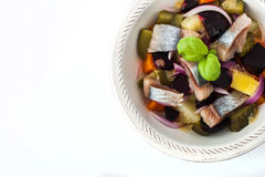 Vegetable salad with herring on the white ceramic dish  top view Stock Photography