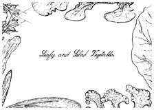 Hand Drawn of Leafy and Salad Vegetable Royalty Free Stock Images