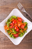 Vegetable salad. Stock Photography