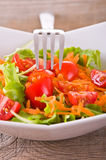 Vegetable salad. Stock Photos