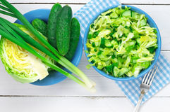 Vegetable salad and ingredients Stock Images
