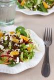 Vegetable salad with lentil Stock Images