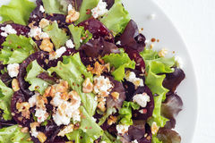 Vegetable salad of lettuce leafs, sliced beetroot, feta cheese, and walnuts with olive oil and balsamic vinegar dressing Royalty Free Stock Images
