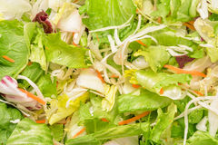 Vegetable salad mix Royalty Free Stock Photos