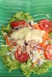 Vegetable salad mixed put tuna Royalty Free Stock Photos