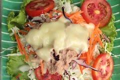 Vegetable salad mixed put tuna Stock Image