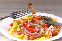 Vegetable salad with mushrooms Royalty Free Stock Image