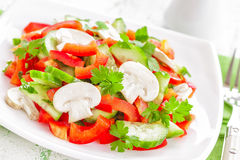 Vegetable salad with mushrooms Stock Photos