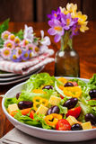 Vegetable salad with olives Royalty Free Stock Photography