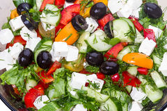 Vegetable salad with olives and mozzarella Stock Photography