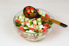 Vegetable salad with onion, tomato and cucumber Royalty Free Stock Image