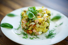Vegetable salad with pickled cucumbers Stock Photos