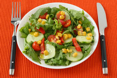Vegetable salad on a plate Stock Images