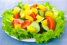 Vegetable salad on plate Royalty Free Stock Photos