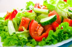 Vegetable salad on plate Stock Image