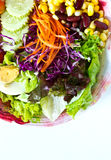 Vegetable salad on the plate Royalty Free Stock Image