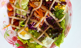 Vegetable salad on the plate Royalty Free Stock Photography