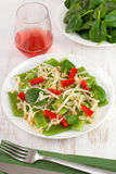 Vegetable salad on the plate Royalty Free Stock Photo