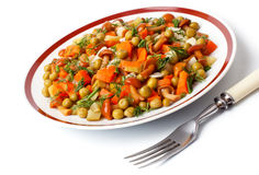Vegetable salad in a plate and fork. Stock Images